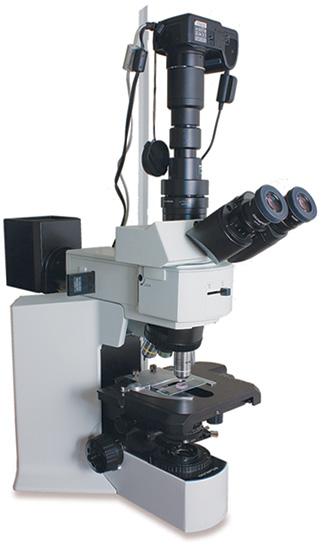 Микроскоп оптический OLYMPUS BX51TRF-5